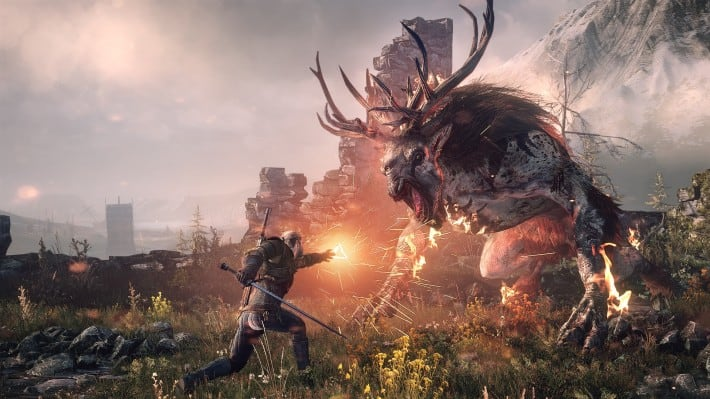 the Witcher 3 Wild Hunt Expansion Packs